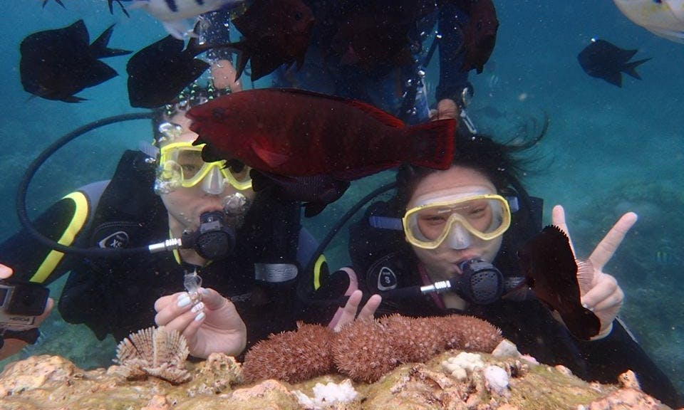 Enjoy Diving Trips in Boracay Island, Philippines