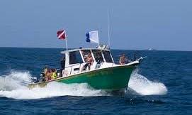 "Scuba Diving Trip on South East Florida Reef on 34ft ""Safari Diver"" Crusder"