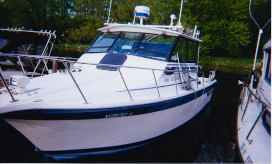 Enjoy Fishing In Fort Mannsville, New York With Captain Butch