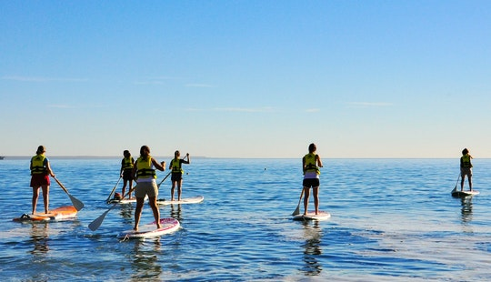 Paddleboard Rental & Lessons In Puerto Madryn, Argentina