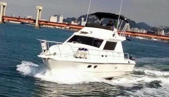 Cuddy Cabyn-oceanic 36-ubatuba