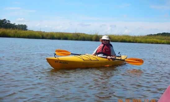 Enjoy Single Kayak Tours In Salisbury, Maryland