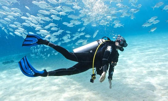 Diving Courses In Selangor, Malaysia