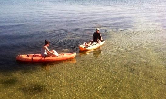 Single Kayak Rental And Tour In Marathon, Florida