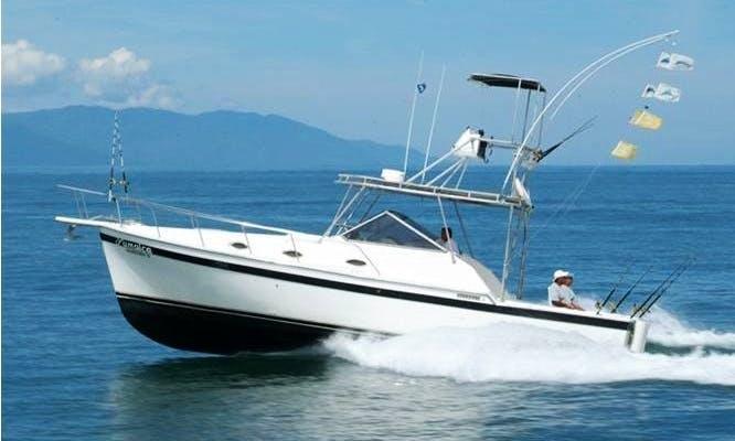Cruise in Luxury on a Motor Yacht Rental in Puerto Vallarta, Jalisco