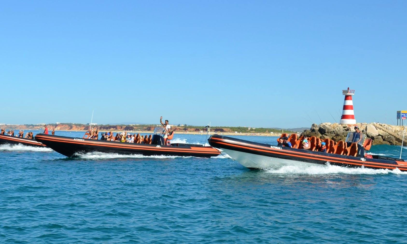 Fantastic Dolphin Watching Experience in the Algarve, Portugal
