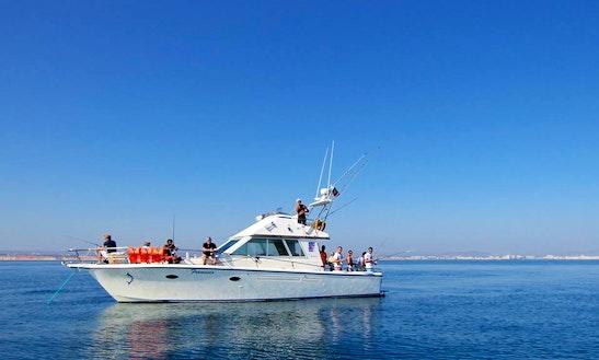 Sport Fisherman Fishing Charter In Quarteira