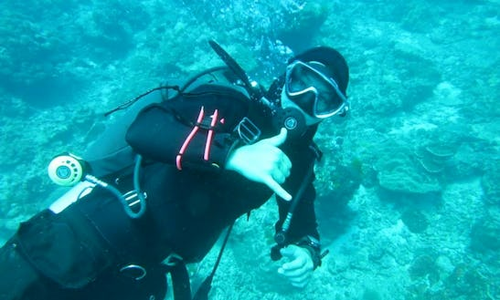 Enjoy Diving Trips And Courses In Ko Samui, Thailand