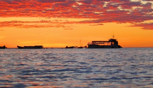 Snorkel Discovery And Sunset Cruises In Coral Bay, Western Australia