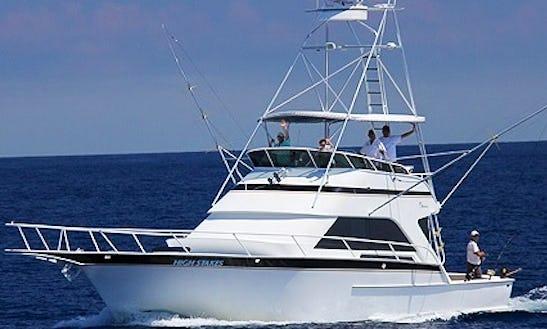 Fishing Charter On 53' Striker Sport Fisherman In Key West, Florida