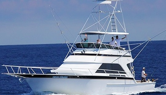 Fishing Charter On 53' Striker Sport Fisherman In Key West, Florida