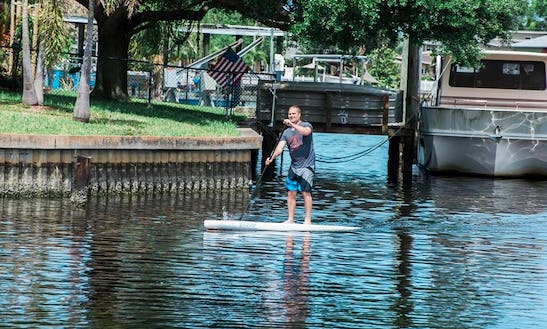 Stand Up Paddleboard Rental In Saint Petersburg, Florida