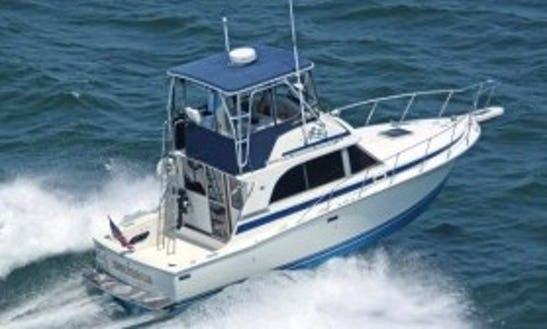 Fishing Charter On 30' Sport Fisherman In Cape Coral, Florida