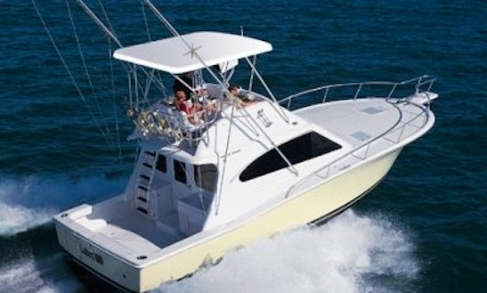 Enjoy Fishing In Palma, Spain On 33' Sport Fisherman