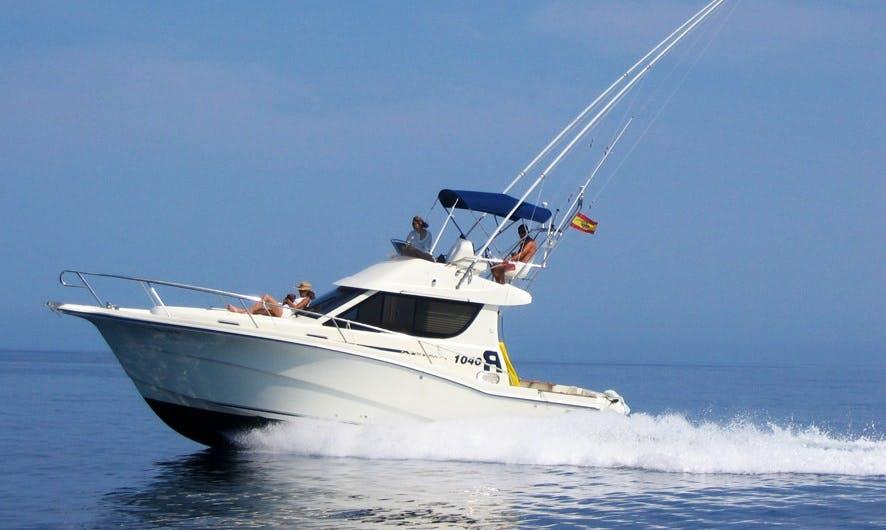 Enjoy Fishing in Palma, Spain on 34' Sport Fisherman