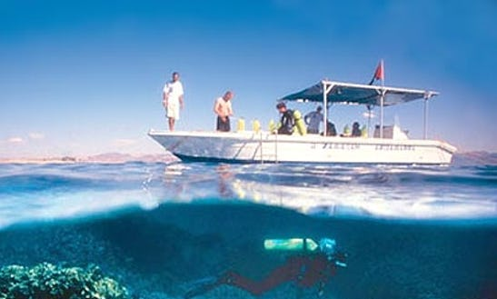 Enjoy Diving Trips And Courses In Kuşadası, Aydın