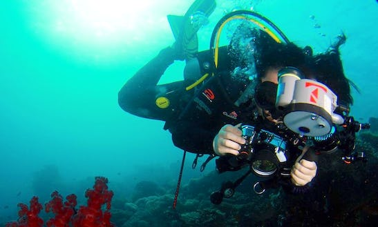 Enjoy Diving Trips And Courses In Kuala Lumpur, Malaysia