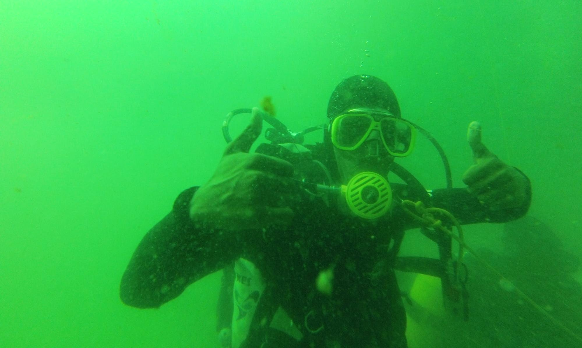 Learn to Dive in Western Cape, South Africa