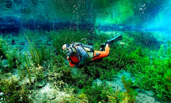 Enjoy Diving Trips & Lessons In Oberösterreich, Austria