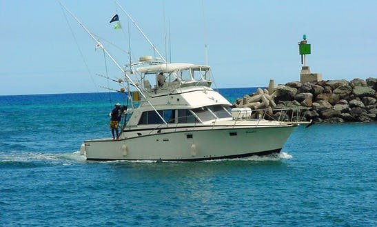 Charter On 42ft Ocean Yacht Fishing Boat In Honolulu, Hawaii