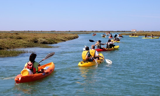 Rent A Kayak In Ria Formosa, Algarve
