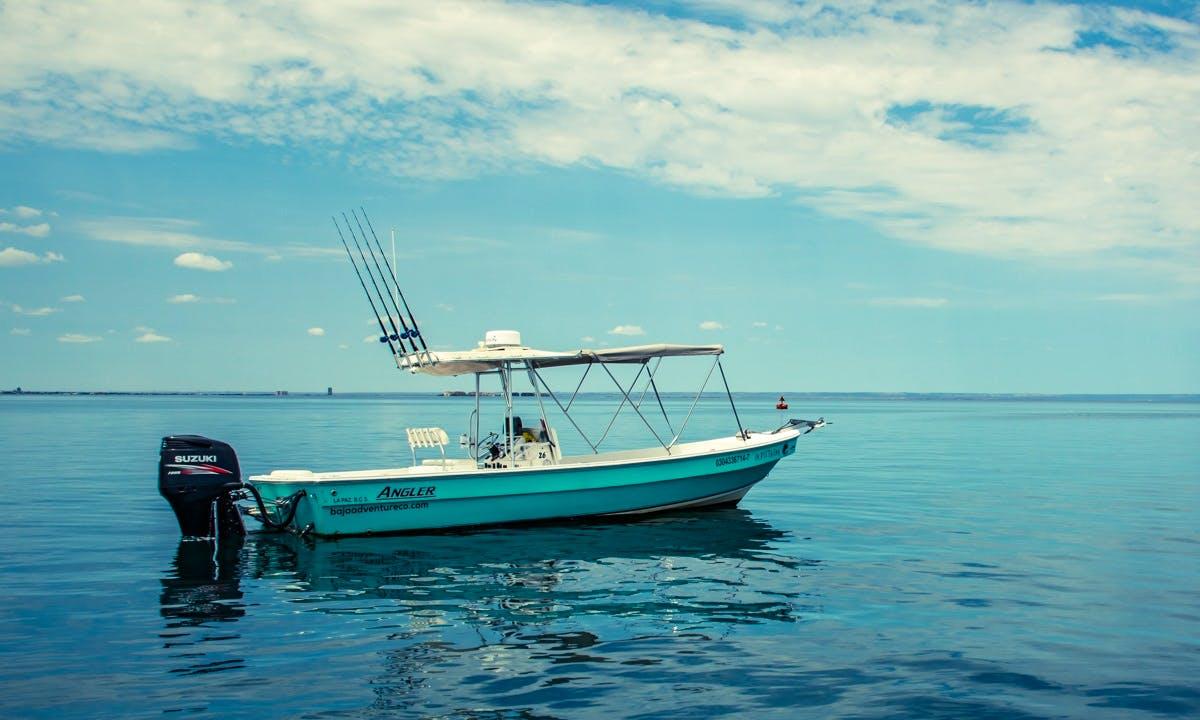 Fishing Charter In La Paz