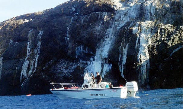 Spearfishing Charters On Center Console In Carolina, Puerto Rico