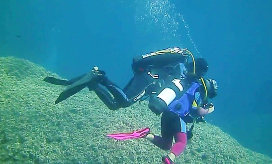 Enjoy Diving Trips And Courses In Lavagna, Liguria