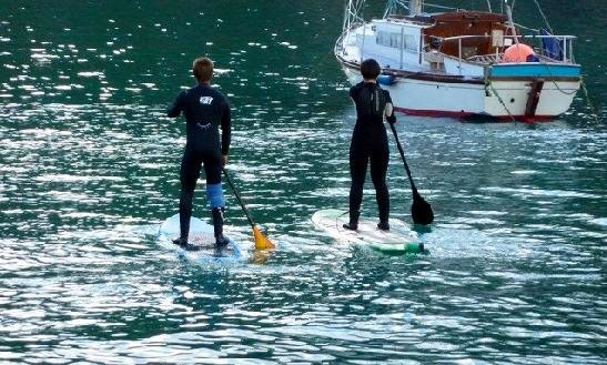 Hire Stand Up Paddleboard In Newquay, England