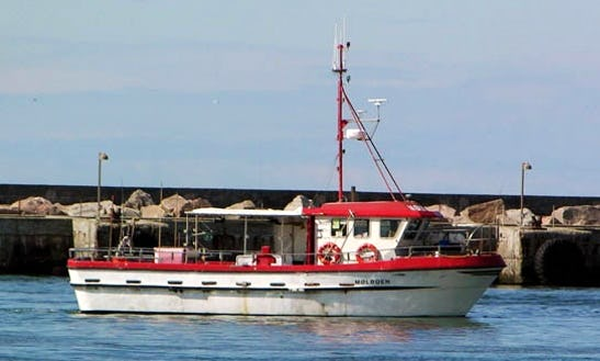 Enjoy Fishing In Thisted, Denmark On 46' Trawler