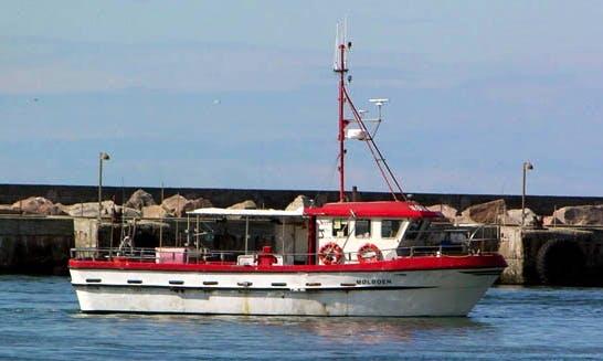 Enjoy Fishing in Thisted, Denmark on 46' Trawler