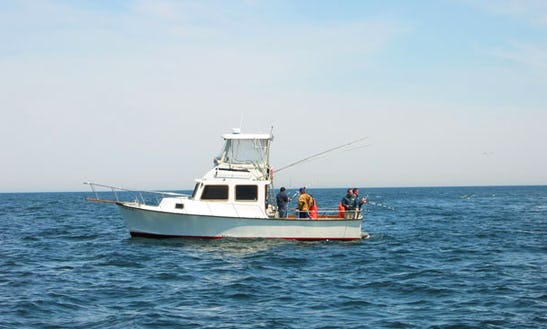 Charter On 34ft Islander Sportfisherman Boat With Captain Bob In Rockport, Massachusetts