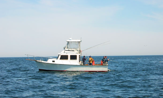 Charter On 34ft Islander Sportfisherman Boat With Captain Bob In Rockport, Massachusetts