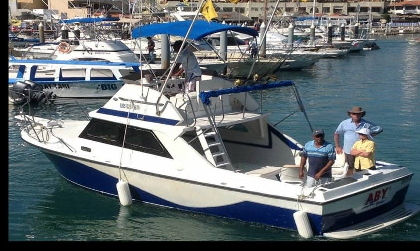 "28ft ""Aby"" California Fishing Charter in Cabo San Lucas, Mexico"