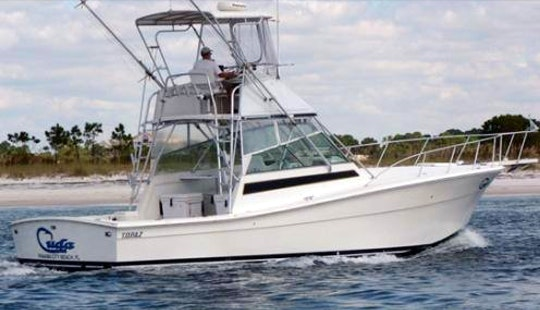 Enjoy Fishing At Panama City Beach, Florida With Captain Bill