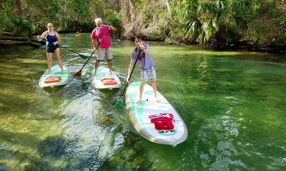 Enjoy Stand Up Paddleboard Rental & Lessons in Weeki Wachee, Florida