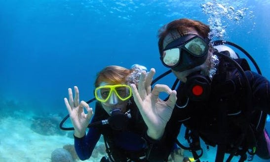 Enjoy Diving Trips & Lessons In Piran, Slovenia