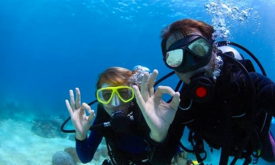 Enjoy Diving Trips & Lessons In Piran, Slovenia