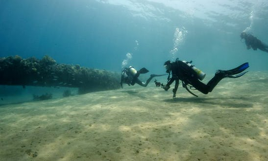 Enjoy Diving Trips & Courses In South Sinai Governorate, Egypt