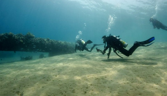 Enjoy Diving Trips And Courses In South Sinai Governorate, Egypt