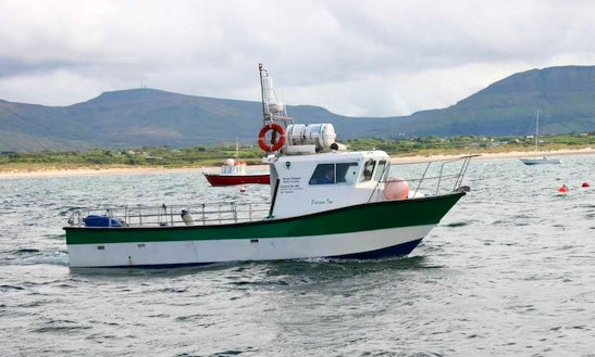 Enjoy Inishmurray Island, County Sligo On Mv Fiona Tee Trawler