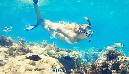 Enjoy Snorkeling Tours In Palma, Balearic