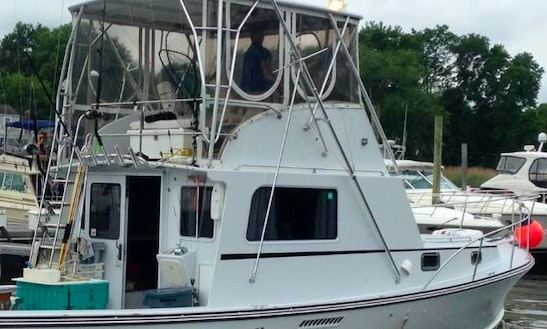 Sport Fisherman Fishing Charter In Montauk