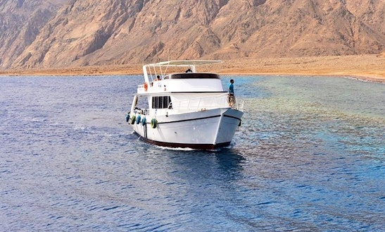 Enjoy Diving Trips & Courses In Dahab, Egypt