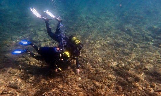 Enjoy Diving Trips In Colera, Catalunya