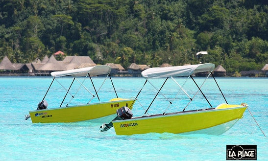 Quintrex 355 Dart 15hp Rental In Bora Bora