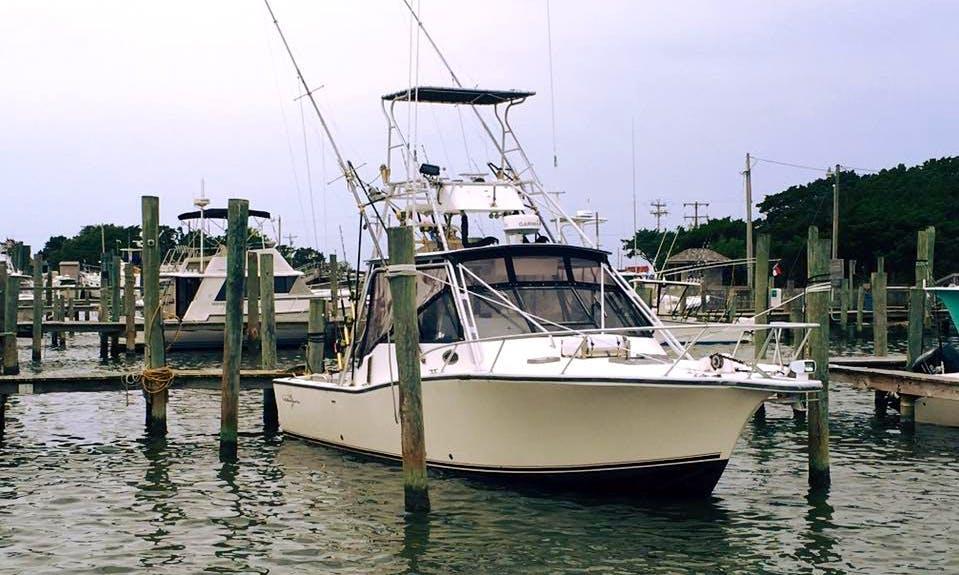 "Enjoy ""Carolina Style"" 32′ Albemarle Offshore Fishing Charter in Wanchese, NC"