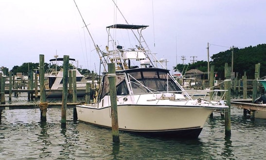 "Enjoy ""carolina Style"" 32′ Albemarle Offshore Fishing Charter In Wanchese, Nc"