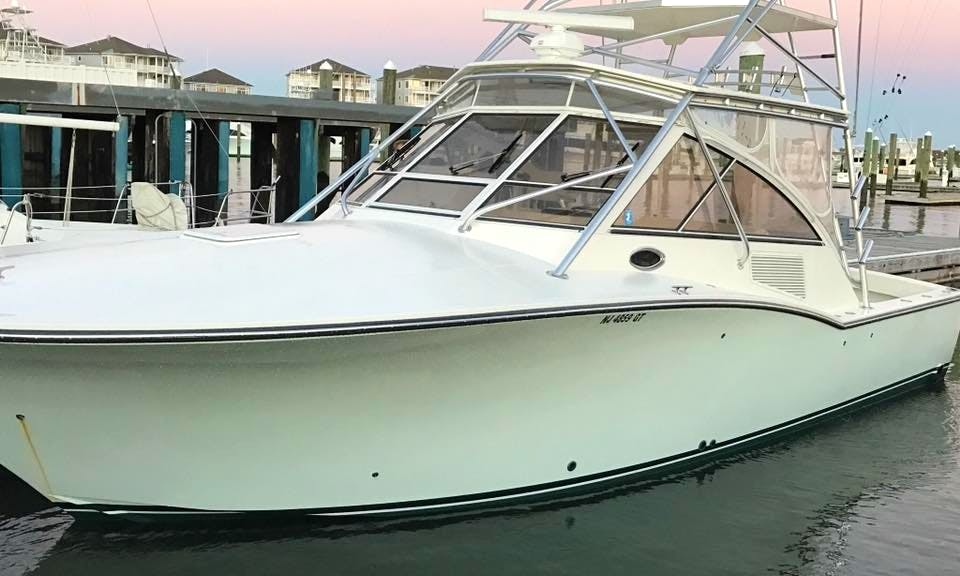 Enjoy Offshore Fishing Charters in Wanchese, NC