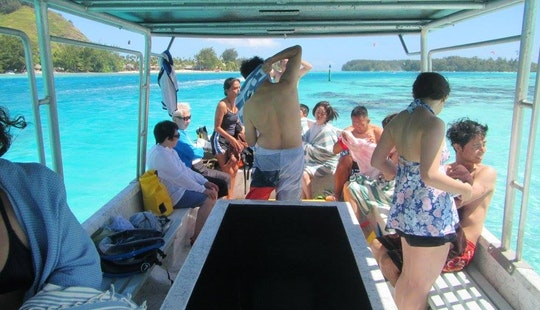 Glass Bottom Boat Excursions In Moorea With Captain Taina